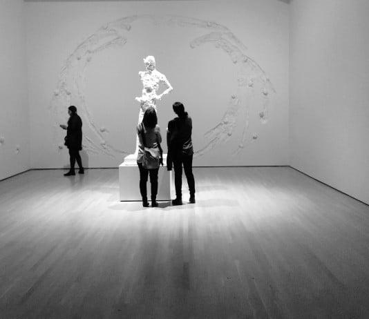 Voir les talents que les autres ne voient pas - Photo Jean-Baptiste Audrerie - Toute reproduction interdite sans autorisation - 2015